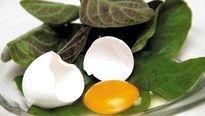 8 món ngon, bài thuốc từ trứng gà cực tốt