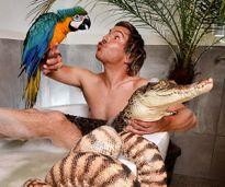 Phát hoảng anh chàng tắm chung với cá sấu và trăn khủng