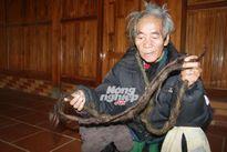 Dị nhân 70 năm không cắt tóc, gội đầu