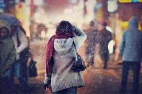 Yêu nhau khi hạ đến, chia tay lúc đông về