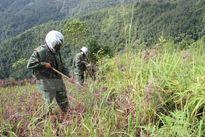 Hà Giang cần hỗ trợ rà phá bom mình trên biên giới Việt-Trung