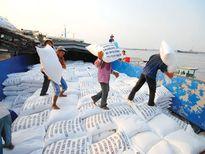 Việt Nam và Thái Lan xuất khẩu gạo sẽ chiếm hơn 47% thế giới