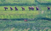 """Lính Bình Nhưỡng thảnh thơi sau khi bán đảo Triều Tiên """"hạ nhiệt"""""""