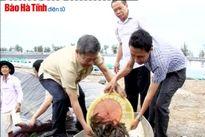Bí thư Tỉnh ủy kiểm tra một số dự án trọng điểm tại KKT Vũng Áng