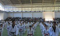 Hơn 75 % võ sinh vượt qua kỳ thi thăng đẳng Taekwondo TPHCM 2015