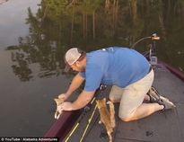Kịch tính khoảnh khắc ngư dân giải cứu hai chú mèo trên sông