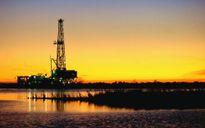 OPEC không giảm sản lượng, giá dầu rớt 7%