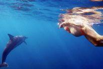 Người phụ nữ mạo hiểm sinh con dưới biển