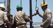 Giá dầu leo dốc bất chấp lượng dầu lưu kho tăng cao