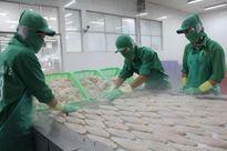 Mỹ điều chỉnh giảm thuế chống bán phá giá cá tra Việt Nam