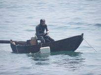 """Lặn tìm Lặn tìm nhím biển """"tiến vua"""""""