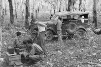 70 khoảnh khắc đẹp của Thông tấn xã Việt Nam
