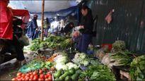 Hà Nội: Giá rau xanh tăng mạnh vì trời mưa