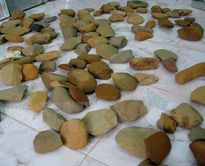 Gặp người hơn 20 năm sưu tầm xây dựng bảo tàng đá ở Đồng Nai