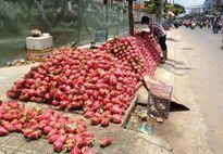 Khi 1kg trái cây Việt giá bằng ly trà đá