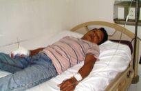 Hà Tĩnh: Bị rắn lục cắn, một công nhân nhập viện