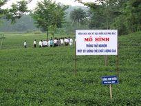 Cty CP Vật tư nông nghiệp Thái Nguyên: Góp phần bình ổn giá vật tư nông nghiệp