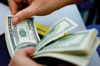 Giá USD ngân hàng sụt giảm kỷ lục