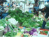 Thông tin 30% rau ở một số chợ đầu mối có tồn dư thuốc bảo vệ thực vật: Mẫu kiểm nghiệm đều là rau thô