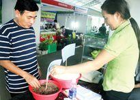 Gạo thảo dược được người tiêu dùng đánh giá cao