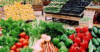Tăng cường kiểm tra hàng nhập khẩu ảnh hưởng tới sức khỏe