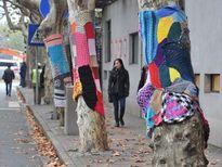 """Ảnh: """"Mặc"""" áo len chống rét cho cây trên phố Thượng Hải"""