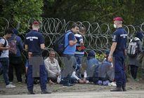 Macedonia dựng rào thép trên biên giới Hy Lạp để chặn người di cư