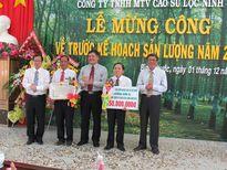Công ty TNHH MTV Cao su Lộc Ninh về trước kế hoạch 38 ngày