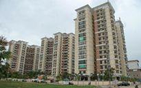 Bất động sản 24h: Nhà ở cho thuê còn gây khó cho người thu nhập thấp