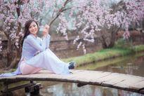 """Cô hot girl trường """"Kinh - Công"""" khoe sắc bên hoa đào"""