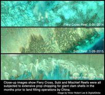 Thêm bằng chứng Trung Quốc tàn phá nặng nề Biển Đông
