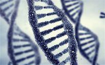 Hàng nghìn phụ nữ vô tình mang gene ung thư buồng trứng