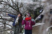 Gái trẻ vượt hàng trăm cây số lên Sapa ngắm tuyết