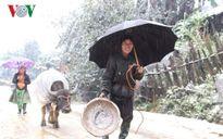 Người dân lao đao vì mưa rét và băng tuyết