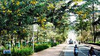 Khám phá 7 cung đường đèo đẹp dẫn vào Đà Lạt (Lâm Đồng)
