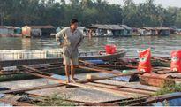 Tết buồn tại làng cá bè Biên Hòa