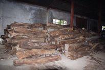 Đà Nẵng: Thu giữ trăm khối gỗ quý không rõ nguồn gốc
