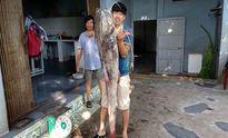 Câu được cá lăng đuôi đỏ quý hiếm cực khủng