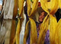 Festival Văn hóa tơ lụa VN - châu Á