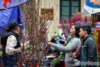 Tận hưởng không khí Tết xưa ở chợ hoa Hàng Lược
