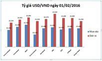 Tỷ giá USD/VND hôm nay (02/01): Tỷ giá trung tâm bật tăng 11 đồng