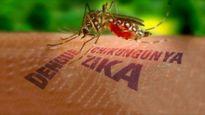 10 căn bệnh khủng khiếp do muỗi lây truyền