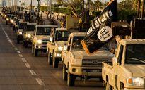 """IS lôi kéo tân binh bằng cách treo thưởng """"khủng"""""""