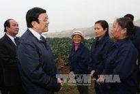 Chủ tịch nước thăm và chúc Tết tại Hưng Yên, Hà Nam