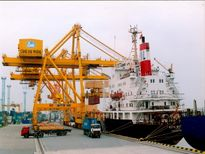 Phương án giúp cảng Hải Phòng tăng năng suất tới 22,5% trong năm 2015