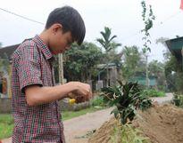 Nô nức dựng cây nêu đón Tết