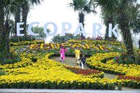 Hà Nội sắp có Lễ hội hoa Xuân lớn nhất miền Bắc tổng đầu tư 3,5 tỷ