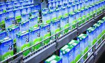 Con số này cho thấy chi phí để giữ vị trí số 1 ngành sữa ngày càng đắt đỏ