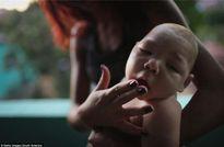 4 bệnh cực kỳ nguy hiểm do muỗi lây truyền