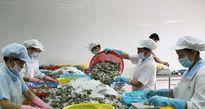 An toàn thực phẩm là thách thức lớn của Việt Nam